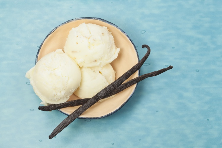 Vanilla ice cream in rustic bowl on blue table. Top view