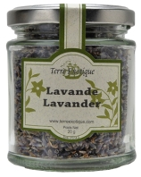 Lavender Flowers HEFLLV